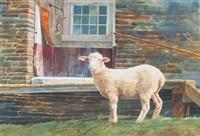 white lamb by richard yaco