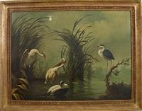 shorebirds in tropical landscape by ira monte