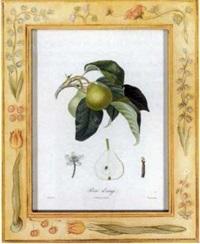 traité des arbres fruitiers, nouvelle edition by henri louis duhamel du monceau