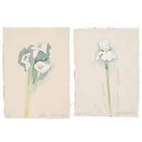 lilies and iris (2) by john alexander