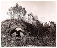 portrait in an allegorical landscape by jerry uelsmann