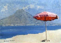 vico, umbrella by edward holroyd pearce