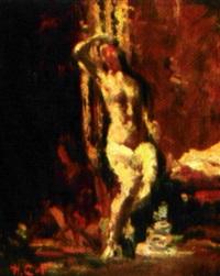 femme dans un harem by henry cat