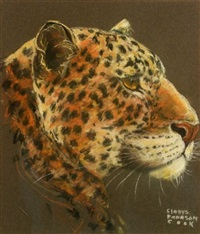 leopard (+ 2 others; 3 works) by gladys emerson cook