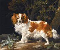 king charles spaniel by george stubbs