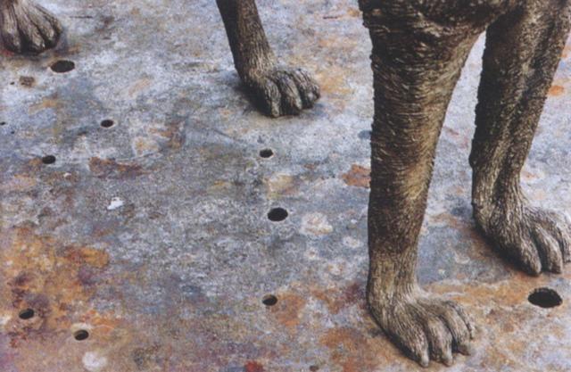 bronze wolf by kiki smith