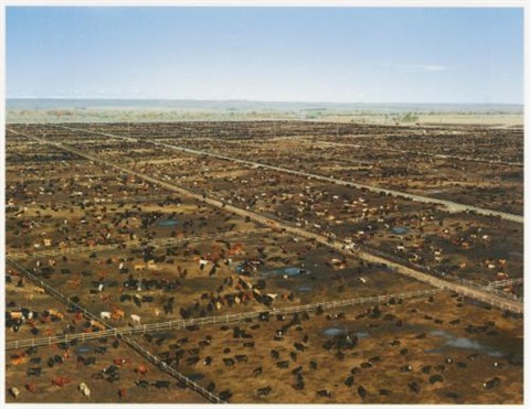 greeley by andreas gursky
