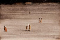 figures in a moroccan landscape by brion gysin