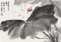 荷花 by liang ji