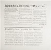 untitled (salmon sex changes) by karl haendel