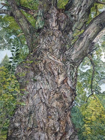 the tree by ellen altfest