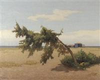 paysage en bord de mer by memo vagaggini