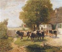 kühe am bauernhof by paul wesley arndt