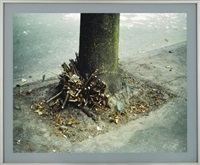 clipped branches, east cordova st., vancouver by jeff wall