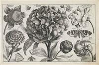 figure fatti da cinque punti obbligati (set of 13 works) by carlo labruzzi