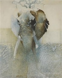 elephant in the mist by keith joubert