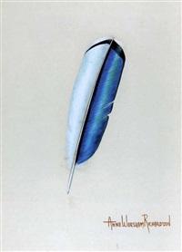 feather by anne worsham richardson