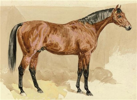 a bay stallion by frank paton