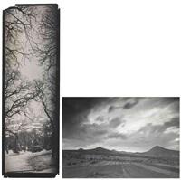 paysage panoramique vertical, vu du jardin lobkovic prague, paysage de campagne. république tchèque (2 works) by josef sudek