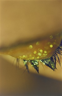 sparks by marilyn minter