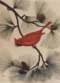 red cardinal in pine by anne worsham richardson