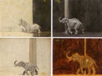 hippo (+ 3 others; 4 works) by pierce rice