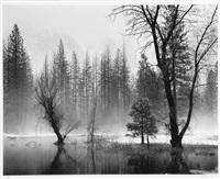high sierra, california by peter gasser