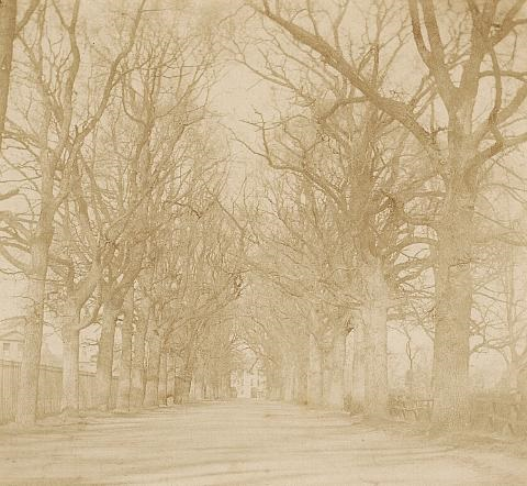 coley avenue reading by william henry fox talbot