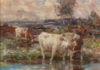 cattle watering by andrew douglas