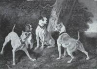 paesaggio con quattro cani by o. spiers