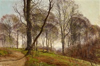 frühling im buchenwald by janus andreas barthotin la cour