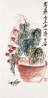 海棠蚂蚱 by qi baishi