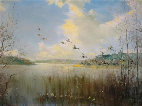 mallard in flight over sowley pond new forest by vernon ward