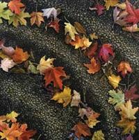 autumn leaves by poppy drews liem