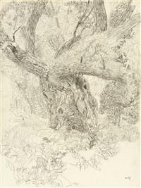 waldstudie (study) by hans böhler