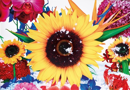 artwork by marc quinn