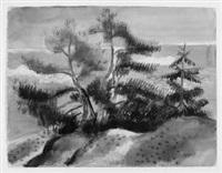fichten an einem uferhang by annot (anna ottonie) jacobi
