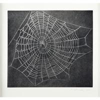 untitled, web. no. 1 by vija celmins