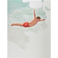 swan diver; bo'sun's cradle' skinny dipping (night) (3 works) by duncan hannah