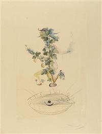 verbeugung des johannisbeerstrauchs (aus: flordali, früchte) 1969/70 by salvador dalí