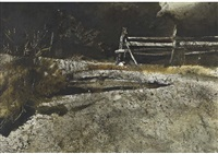 ledge gate by andrew wyeth