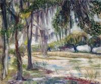 st. martinsville, louisiana by jacques van aalten