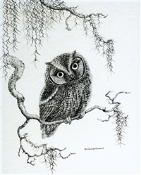 owlbert, barn owl by anne worsham richardson