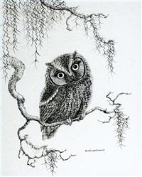 owlbert, barn owl by anne worsham richardson