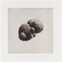 12 objects, 12 etchings (portfolio of 12 w/title & colophon) by rachel whiteread