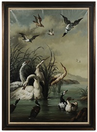 swan, herons and ducks in a marsh landscape by ira monte