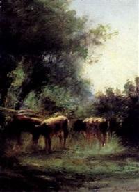 weidende kühe by jacobus jan koeman