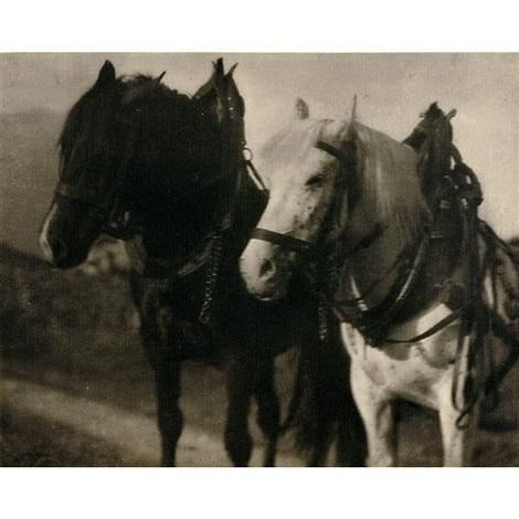 horses by alfred stieglitz