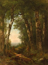 view through the woods by asher brown durand