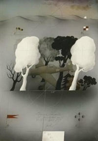 flugzeug im schwarzwald by alois janak